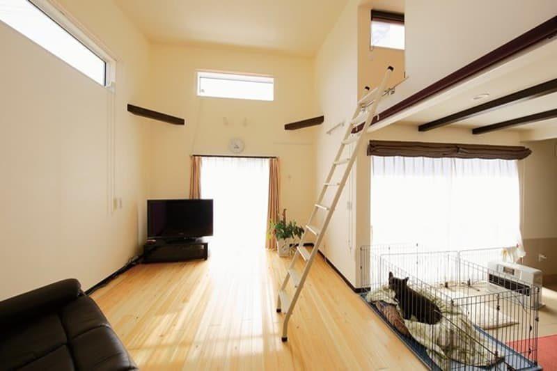 【ヤベホーム】<br>愛犬との暮らしを共有する<br>ライフスタイルを実現